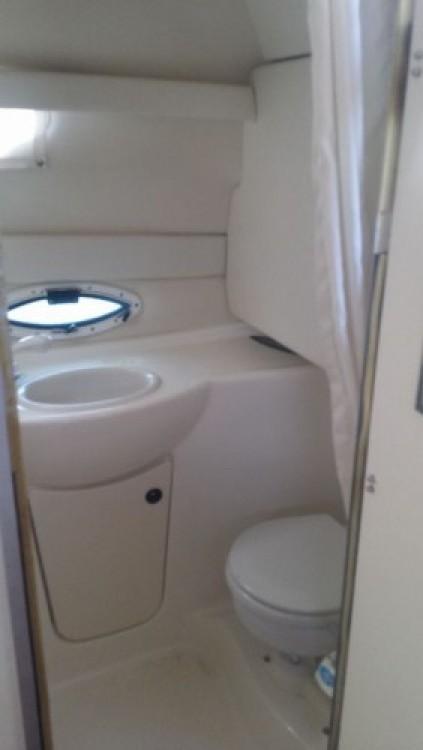 Bayliner Bayliner 245 SB zwischen Privatpersonen und professionellem Anbieter Menton