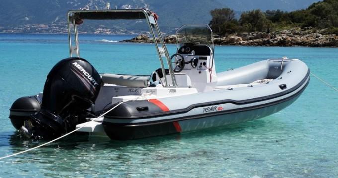 MRL Ribs Predator 650 TS zwischen Privatpersonen und professionellem Anbieter Saint-Florent