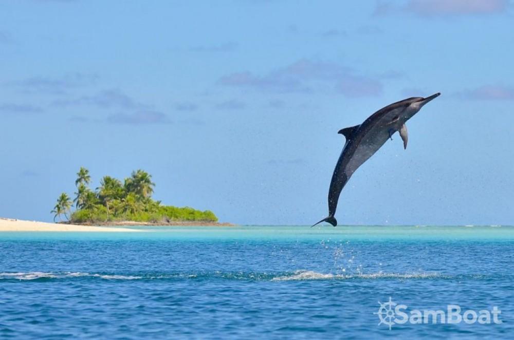 Katamaran mit oder ohne Skipper Fountaine Pajot mieten in Papeete