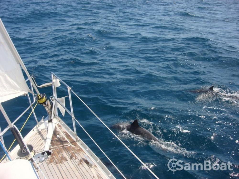 Segelboot mieten in Arradon - Bénéteau Oceanis 343 DL