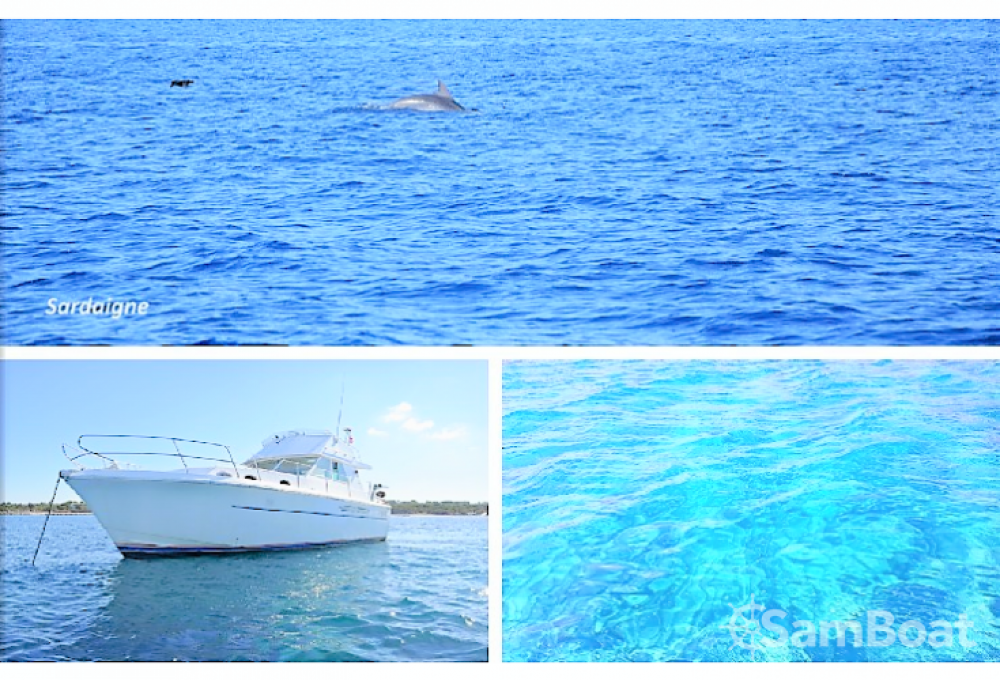 Yacht-Charter in Cannes - Princess Princess 37 auf SamBoat