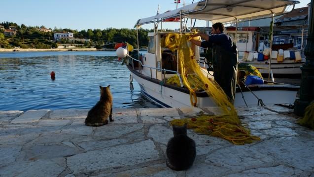 Yacht-Charter in Korfu - Boréal Boréal 44 auf SamBoat