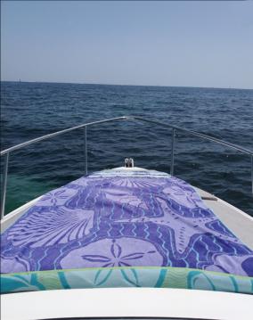 Ein Sessa Marine Oyster 22 mieten in Cannes