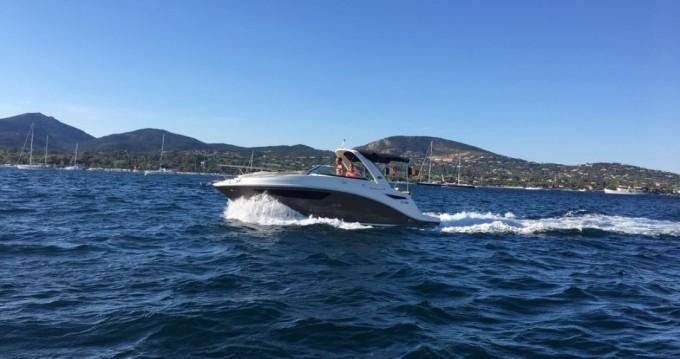 Motorboot mieten in Port Grimaud - Sea Ray Sea Ray 265 Sundancer