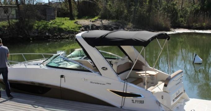 Motorboot mit oder ohne Skipper Sea Ray mieten in Port Grimaud
