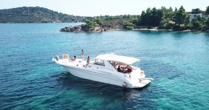 Motorboot mieten in Ormos Panagias - Sea Ray Sea Ray 450 Sundancer