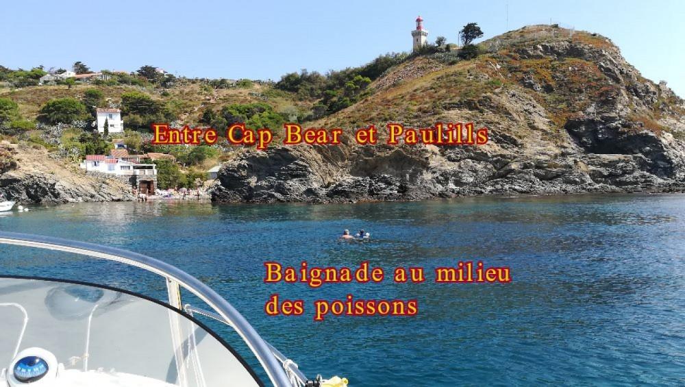 Bootsverleih Quicksilver Activ 555 Cabin Argelès-sur-Mer Samboat