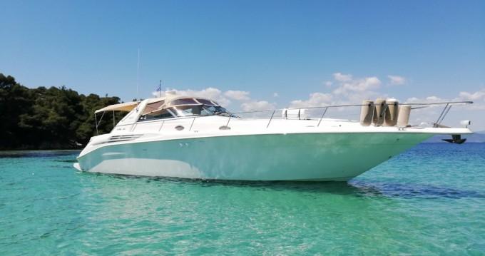 Sea Ray Sea Ray 450 Sundancer zwischen Privatpersonen und professionellem Anbieter Ormos Panagias