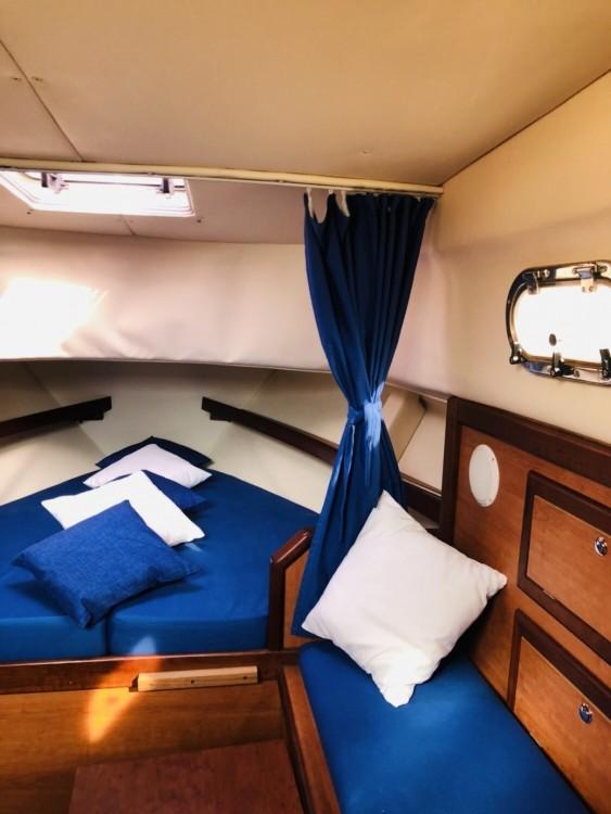 Motorboot mit oder ohne Skipper Di Luccia 28 mieten in Piano di Sorrento