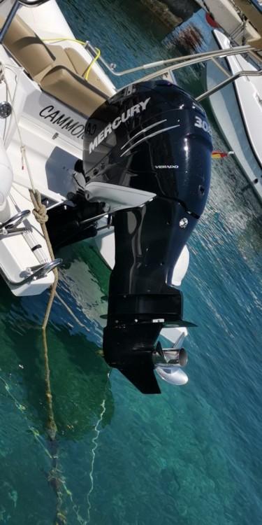 Vermietung Schlauchboot Black Fin mit Führerschein