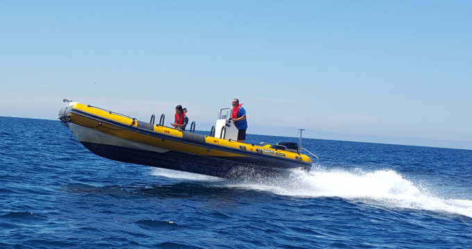Schlauchboot mieten in Peniche - Bwa Bwa 750