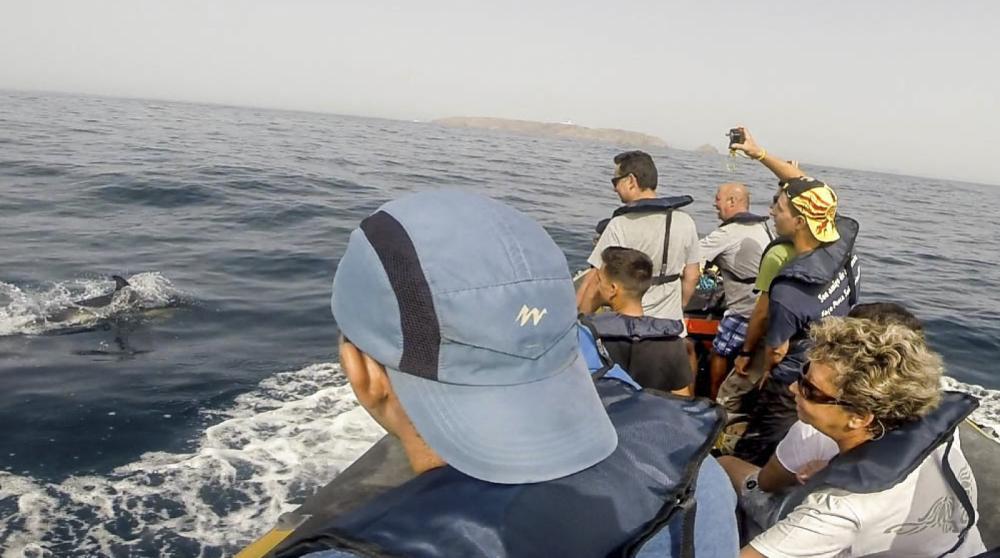 Schlauchboot mit oder ohne Skipper Bwa mieten in Mitte