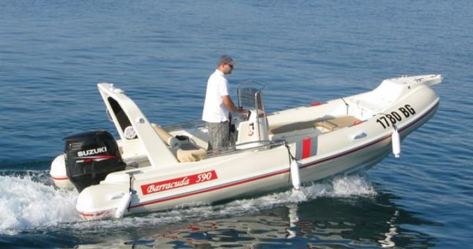 Bootsverleih Barracuda Barracuda 590  Biograd na Moru Samboat