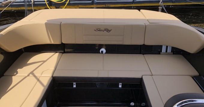 Sea Ray SPX 210 zwischen Privatpersonen und professionellem Anbieter Villajoyosa