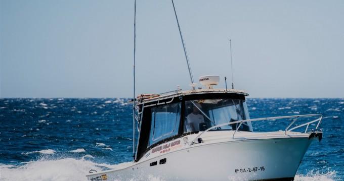 Motorboot mieten in Las Galletas - Luhrs Tornament open 240