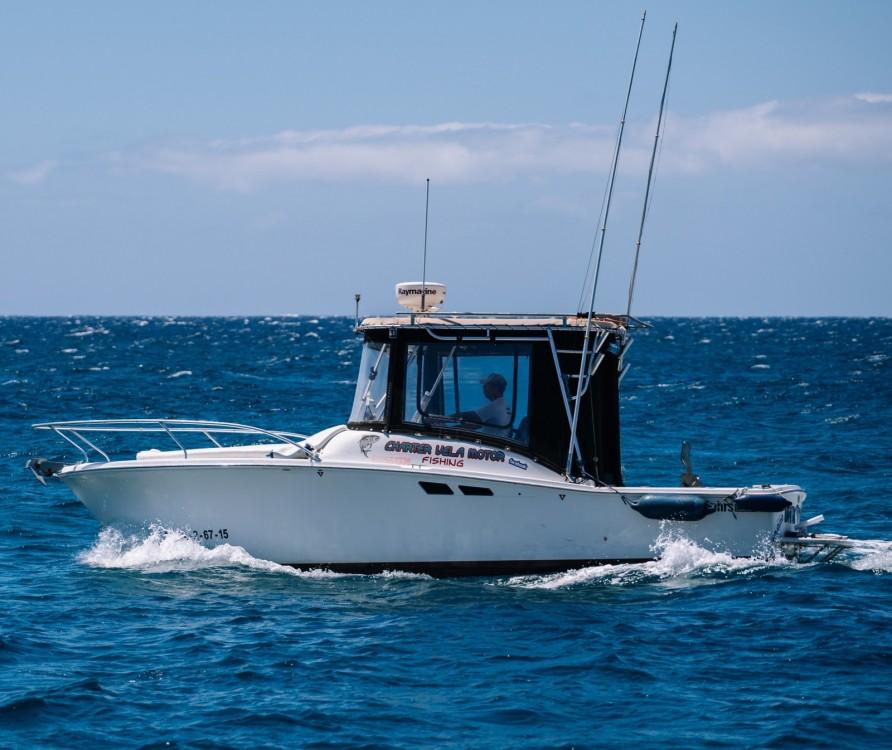 Vermietung Motorboot Luhrs mit Führerschein
