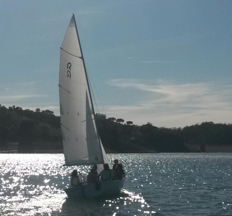 Vermietung Segelboot Polysier mit Führerschein
