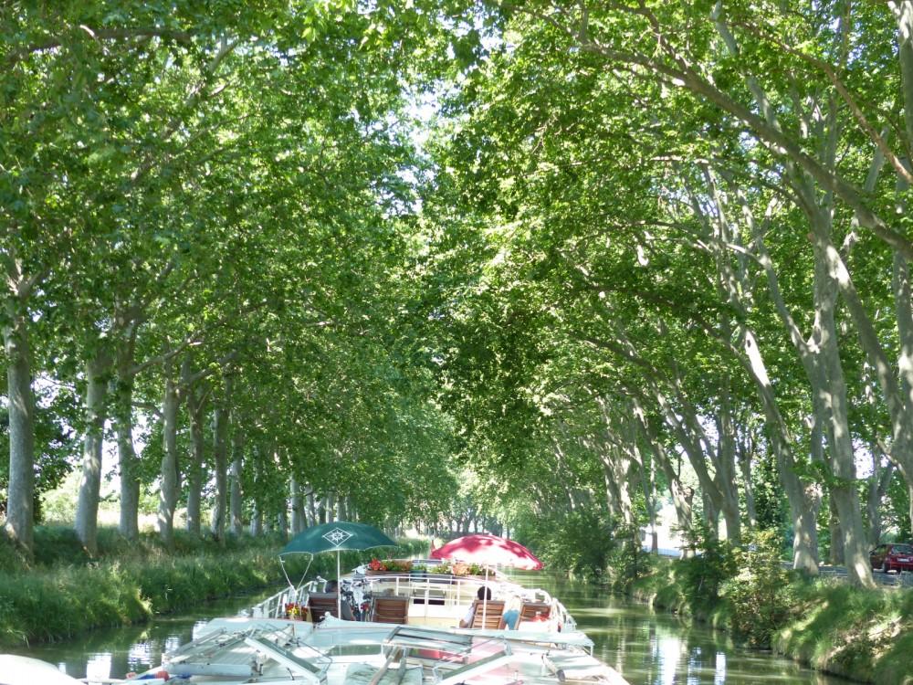 Bootsverleih Carcassonne günstig canal du midi