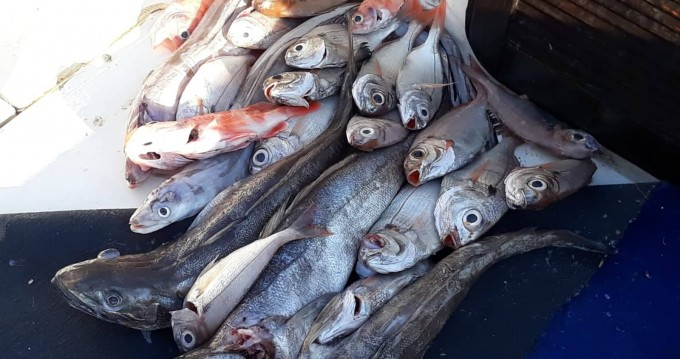 Bootsverleih Torre Pali günstig fisherman