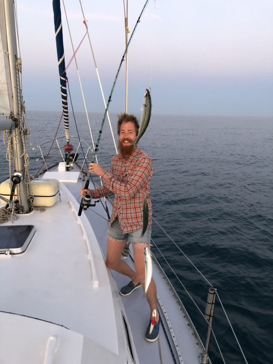 Bootsverleih Freedom 12 metres Le Grau-du-Roi Samboat