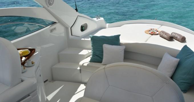 Pershing Pershing 37 zwischen Privatpersonen und professionellem Anbieter Ibiza Town