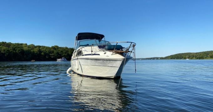 Bootsverleih Bezirk Spandau günstig Sea Ray 245 Sundancer