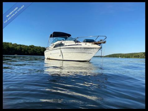 Motorboot mieten in Bezirk Spandau - Sea Ray Sea Ray 245 Sundancer