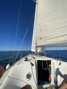 Segelboot mieten in Andernos-les-Bains - Jeanneau Sun 2000