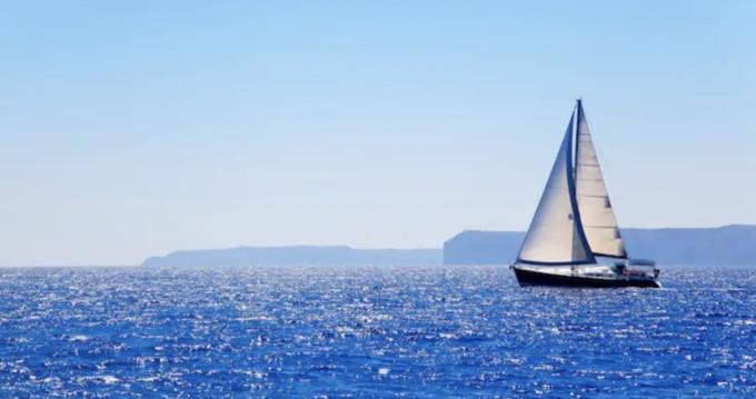 Puma 34 zwischen Privatpersonen und professionellem Anbieter Palma de Mallorca