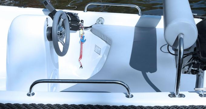 Motorboot mit oder ohne Skipper Alfa mieten in Schwielowsee