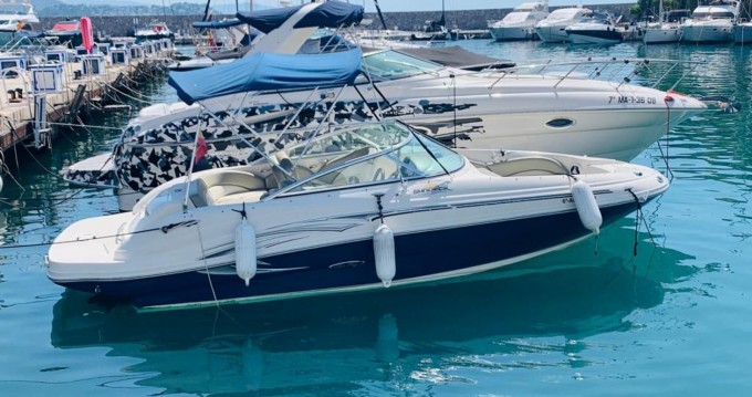 Motorboot mit oder ohne Skipper Sea Ray mieten in Puerto Deportivo de Marbella